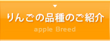 りんごの品種のご紹介